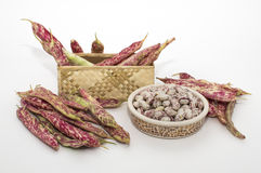 Borlotti beans. Closeup of bowl with pinto beans in pods on white background Stock Image