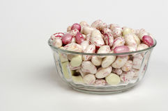 Borlotti beans. Closeup in transparent container, a typical product of italian agriculture Royalty Free Stock Image