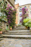 Bormes les mimosas. Is a flowery village Royalty Free Stock Photo