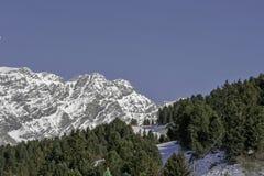 Bormio, Italien - 31. Januar 2005: Skisteigung in Bormio zwischen tr Lizenzfreie Stockbilder