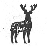 Born to be free lettering in deer. Stock Image