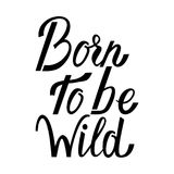 Born to be wild Royalty Free Stock Photos