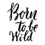 Born to be wild. Hand drawn lettering phrase isolated on white b. Ackground. Design element for poster, greeting card. Vector illustration royalty free illustration