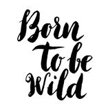 Born to be wild. Hand drawn lettering phrase isolated on white b. Ackground. Design element for poster, greeting card. Vector illustration vector illustration