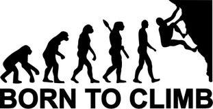 Born to Climb Evolution. Rock climbing stock illustration