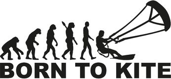 Born to kite evolution. Vector Royalty Free Stock Image