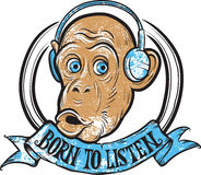 Born to listen monkey Stock Image