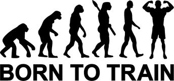 Born to Train Evolution Royalty Free Stock Images