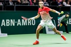 Borna Coric ABN AMRO Tennis Tournament Fotografie Stock Libere da Diritti