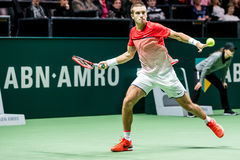 Borna Coric ABN AMRO Tennis Tournament Royaltyfria Foton