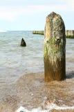 Borne de madeira no oceano Foto de Stock
