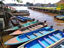 Borneo stroomafwaarts royalty-vrije stock afbeeldingen