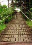 Borneo. Trekker auf Brücke   Stockbild