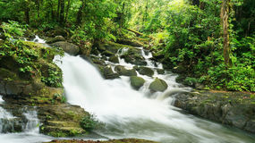 Borneo tropical rain forest waterfall. Beautiful rain forest and waterfall Royalty Free Stock Photos