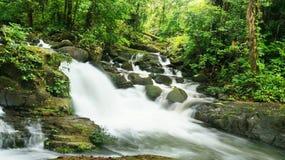 Borneo tropisk regnskogvattenfall Royaltyfria Foton