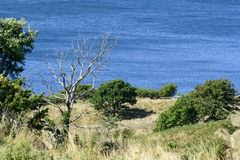 Bornholm island landscape Royalty Free Stock Photography