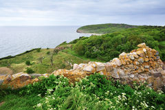 Bornholm island landscape with old wall Royalty Free Stock Image