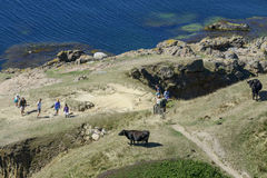 Bornholm island. Tourists enjoy the sunny weather and walking along the cliffs on the Baltic Sea on 14 August 2015 on Bornholm Island near the Hammershus castle royalty free stock photo