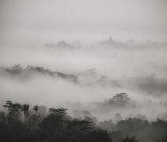 Borobodur在日出的寺庙雾 库存照片