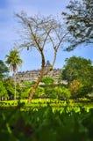 borobudur środkowa Indonesia Java świątynia obrazy stock