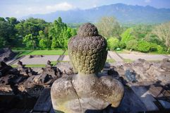 borobudurindonesia java tempel arkivbilder