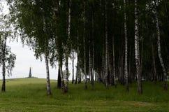Borodino域 主要纪念碑的看法对俄国士兵,博罗金诺战役的英雄的,在Rayevsky电池 图库摄影