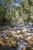 Borosa River. View Borosa River Sierra de Cazorla Jaen Spain Stock Photo
