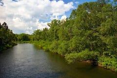 Borova Sihot - Liptovsky Hradok: άποψη από τη λικνίζοντας γέφυρα πέρα από τον ποταμό Vah Στοκ εικόνα με δικαίωμα ελεύθερης χρήσης