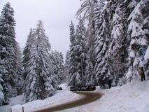 Borovets滑雪胜地,保加利亚 免版税库存照片