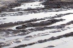 Borowinowa kałuża na drodze gruntowej obrazy stock