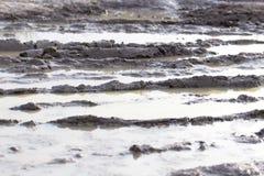 Borowinowa kałuża na drodze gruntowej zdjęcie stock