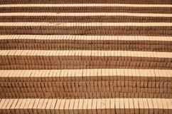 Borowinowe cegły brogować wpólnie Fotografia Royalty Free