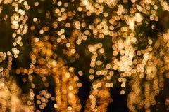 Borrão - bokeh - luzes exteriores decorativas da corda que penduram na árvore no jardim na noite foto de stock