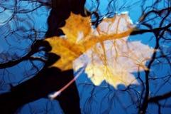 Borrão da reflexão do outono Foto de Stock Royalty Free
