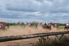 Borrão de movimento da corrida de cavalos Imagens de Stock Royalty Free