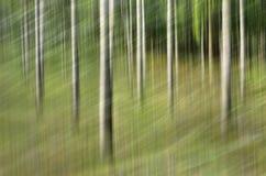 Borrão de movimento, tronco de árvores & licença abstratos, backgrou do verde amarelo imagens de stock
