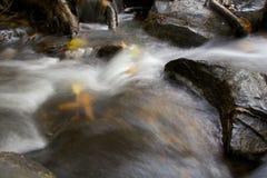 Borrão do rio Fotos de Stock Royalty Free