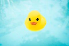 Borracha Ducky Imagem de Stock