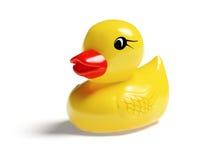 Borracha Ducky Fotos de Stock