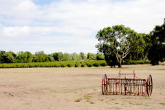 A  Barrosa Valley Vineyard Australia Royalty Free Stock Photo