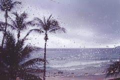 Borre a chuva tropical da tempestade da ilha do fundo na janela fotografia de stock royalty free