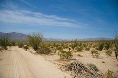 borrego沙漠横向 库存图片