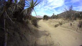 Borrego Desert California Off Road - Pinyon Mtn RD 3 stock video
