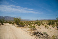 Borrego desert landscape Stock Images