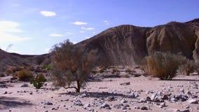 Borrego Desert Off Road - Fish Creek Wash 2 stock footage