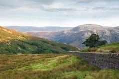 Borrowdale, Cumbria, Inglaterra Fotografia de Stock Royalty Free