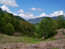 Borrowdale valley, Lake District Royalty Free Stock Photo