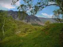 Borrowdale valley, Lake District. Scene of trees and mountains in Borrowdale royalty free stock photography