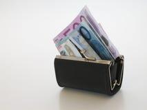 Borsa dei soldi Fotografia Stock Libera da Diritti