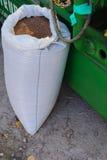 borsa del grano alla fiera Fotografia Stock Libera da Diritti